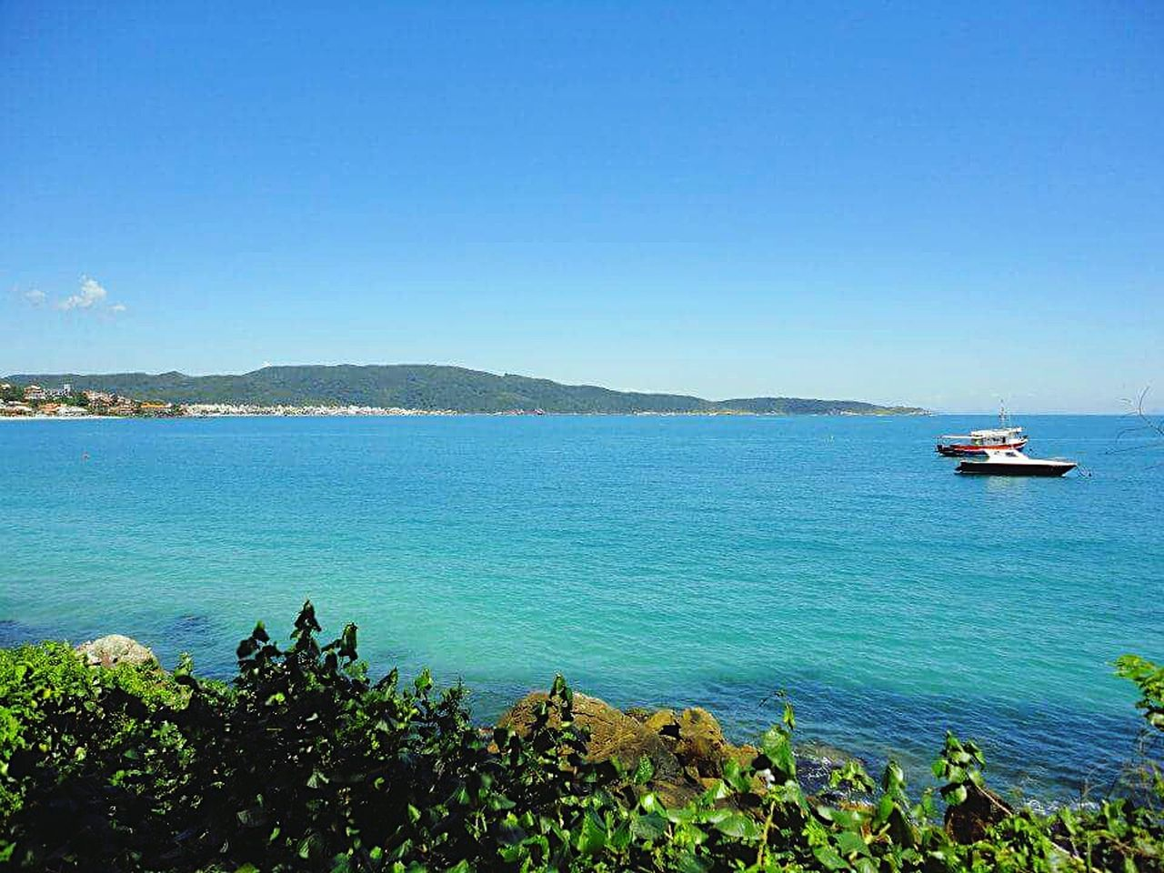 Bombinhas, Santa Catarina - Brasil Blue Sea Blue Sky Clear Sky Bluewaters Landscape Landscape_Collection Water Tranquility Beauty In Nature Nature Travel Destinations Beach Beautiful Beaches BrasilSensacional Santa Catarina, Brazil Bombinhas, SC. Tranquil Scene Peaceful EyeEm Nature Lover Beach Photography