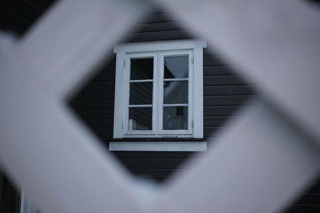 Window Peeking Hole Showcase: February