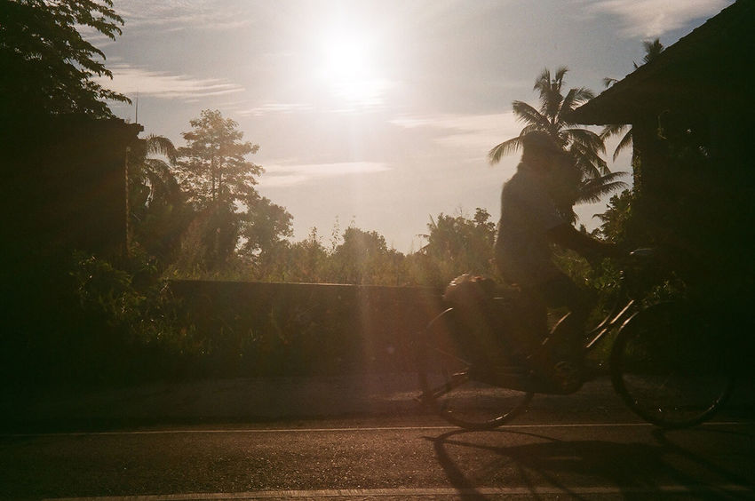 from the archives. lazy afternoons in bali. 35mm Film Analogue Photography Bali INDONESIA Bicycle Day Film Photography Filmisnotdead Land Vehicle Men Mode Of Transport Nature One Person Outdoors People Real People Riding Sky Sun Sunlight Transportation Tree Ubud