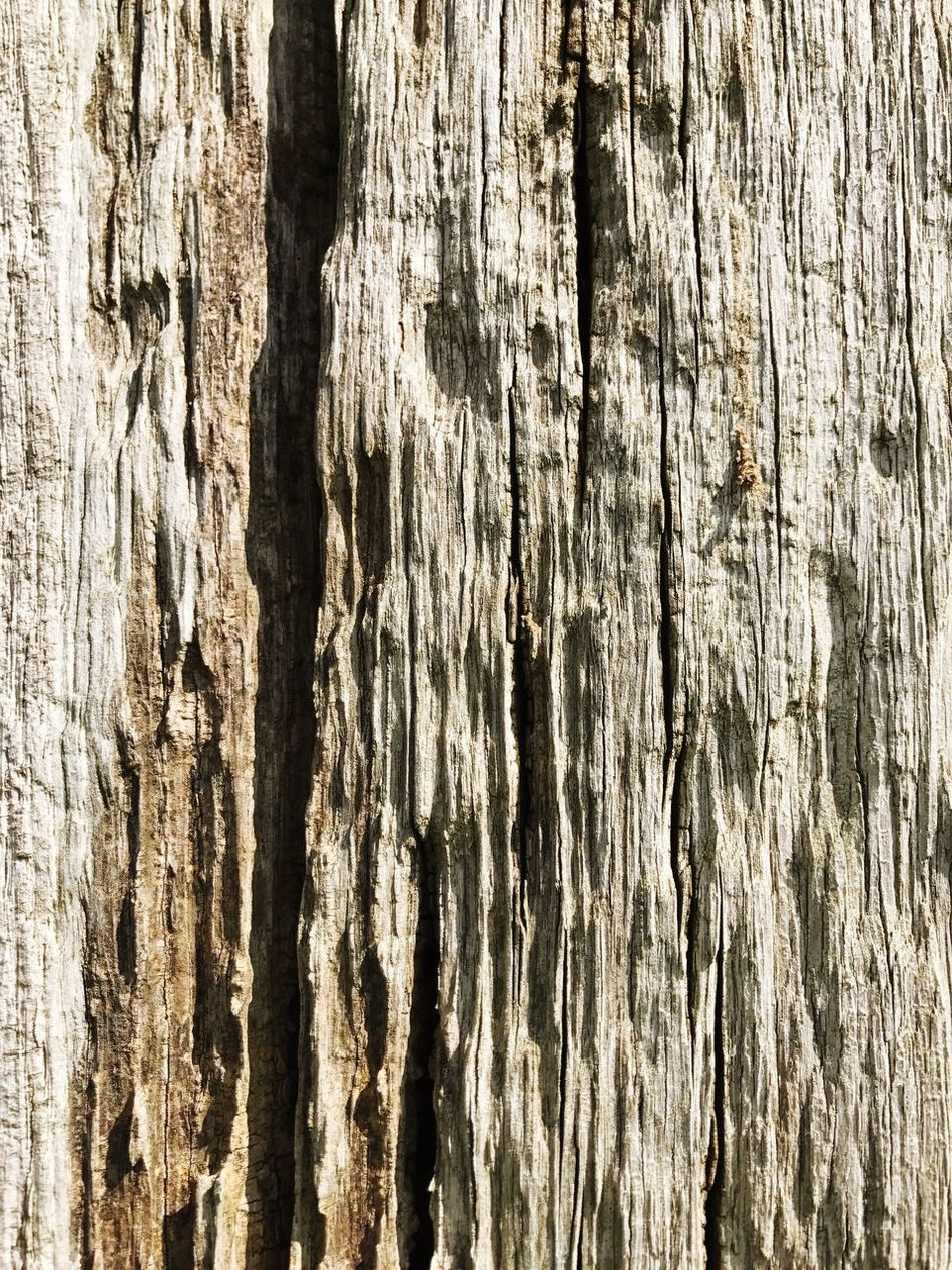 Wood Textures And Surfaces Texture Wood - Material Full Frame Backgrounds Textured  Rough Pattern Cracked Wood Grain Close-up Brown No People Tree Nature Weathered Tree Trunk Outdoors Day Knotted Wood