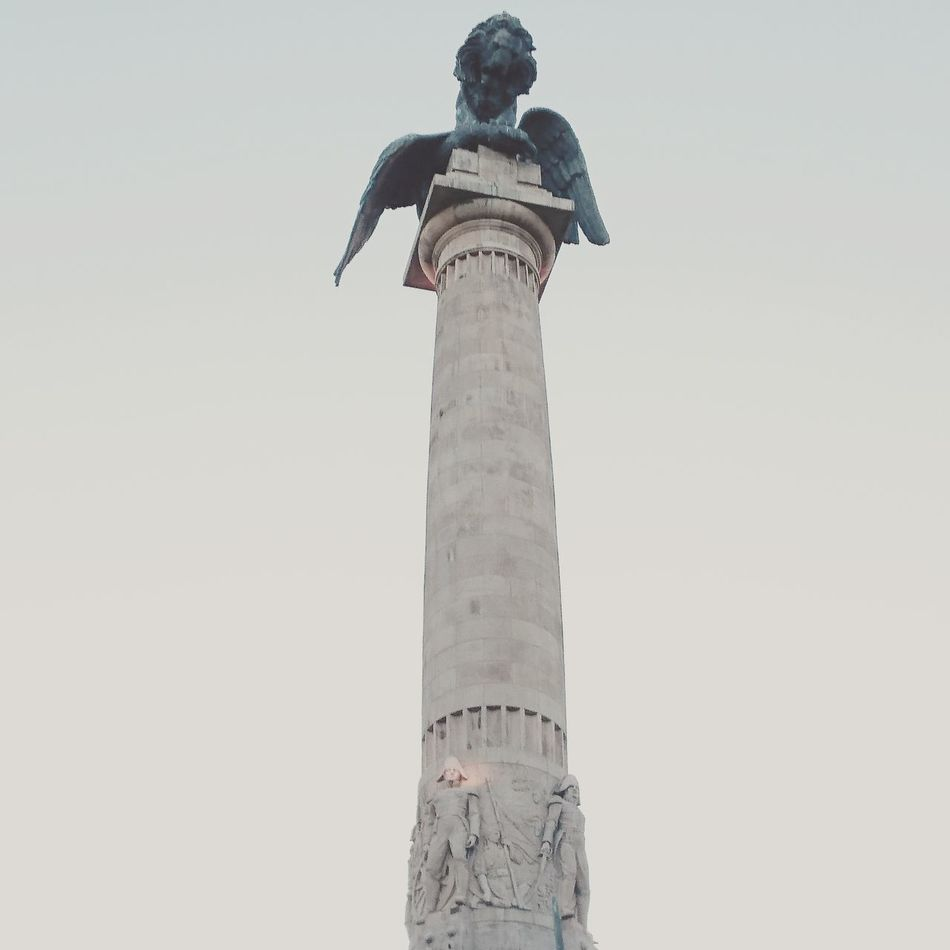 Casa Da Música Boavista Porto Statue Lion Eagle Franch Revolution Art Hello World Statue In The City Statues And Monuments Look Up Part Of History The Fine Art Photography