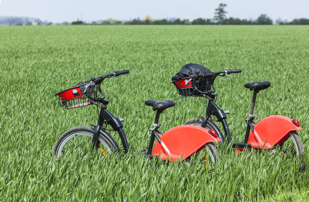 Two bicycles in a green field. Two Bicycles Bicycle Trip Bicycle Bicycles Outdoors Field Green Field Urban Transport Leisure Time Couple Nature Together Togetherness Exercise Time Healthy Lifestyle