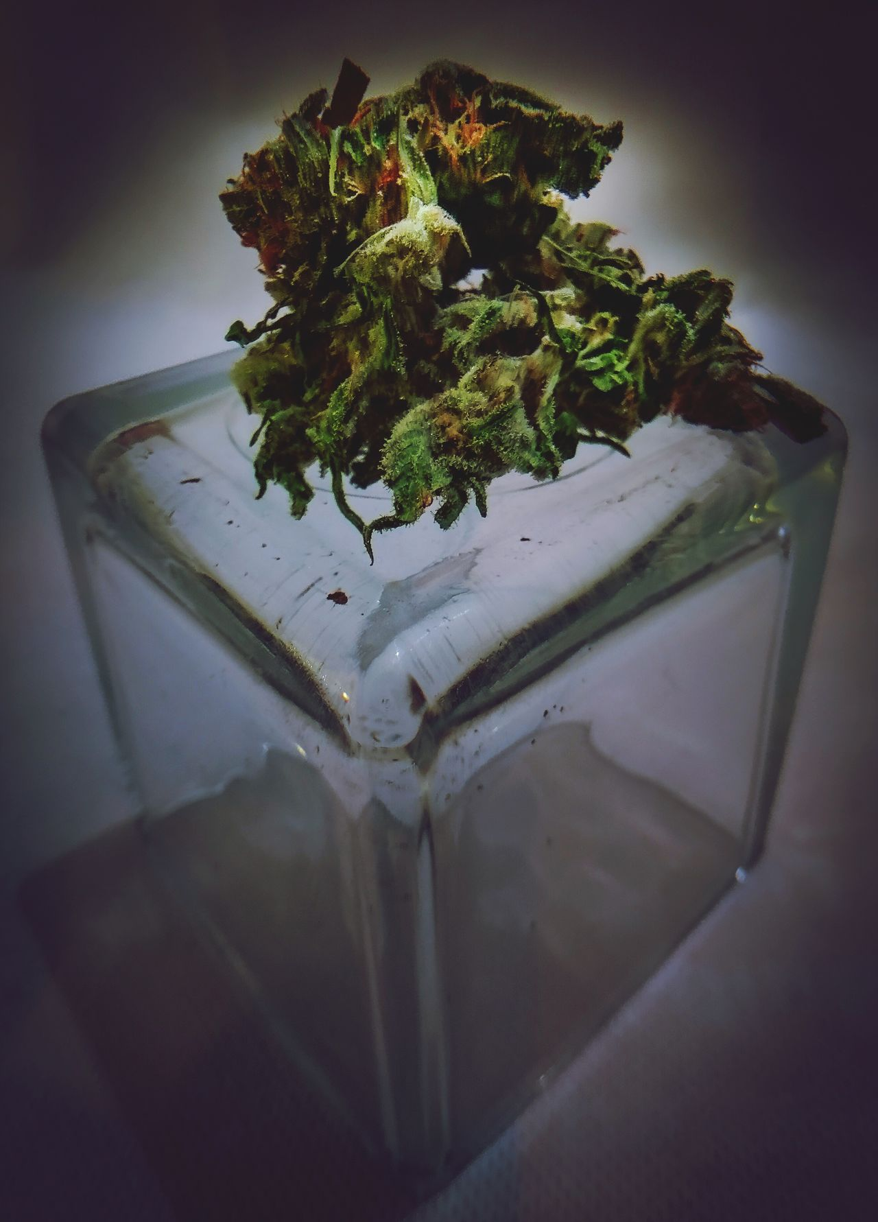Night creativity, urban style No People Indoors  Food And Drink Close-up Table Cannabis Plant Nature Freshness Freestyle Iphonephotography Focus On Foreground Objects Weed Smoke Smoke Weed ArtWork Ganja Urban Urbanphotography Urban Art Glass - Material Soft Softness Soft Focus