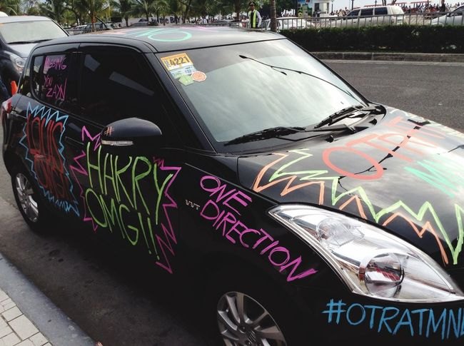 Crazy fan indeed. The Heck Painted Car One Direction Fanatic Cool