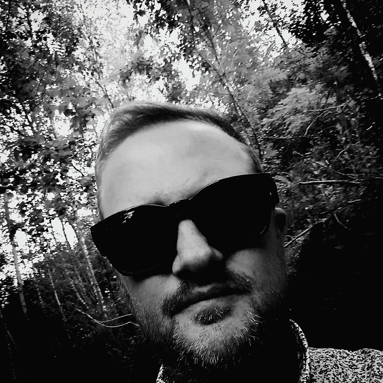 tree, sunglasses, one person, beard, real people, headshot, human face, outdoors, day, nature, close-up, portrait, mammal, people