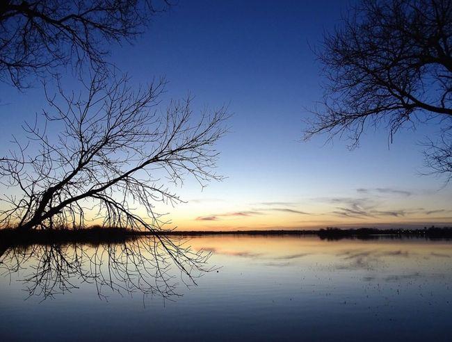 Lake Sunset Beautiful Trees Reflection Nature
