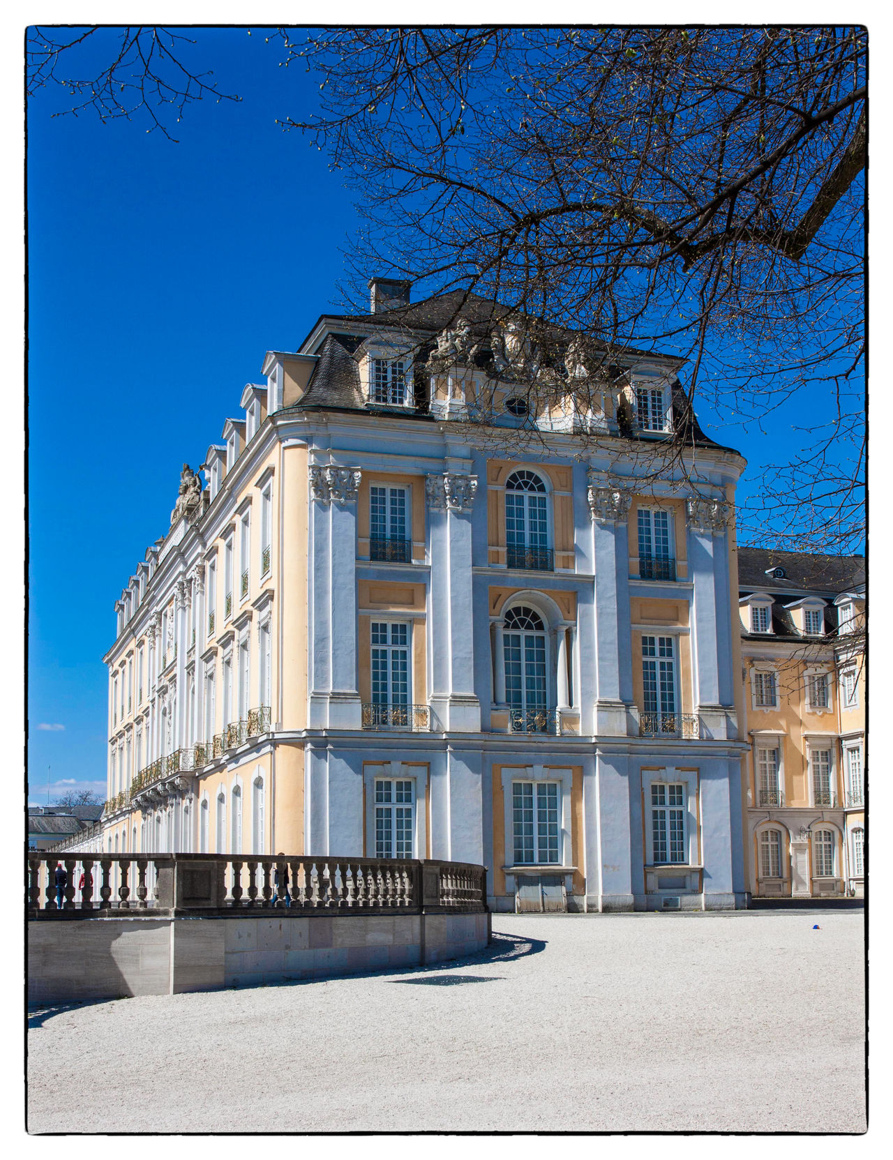 Schloss Augustusburg Architecture Bare Tree Blue Building Exterior Built Structure City Clear Sky Day No People Outdoors Sky Sunlight Travel Destinations Tree