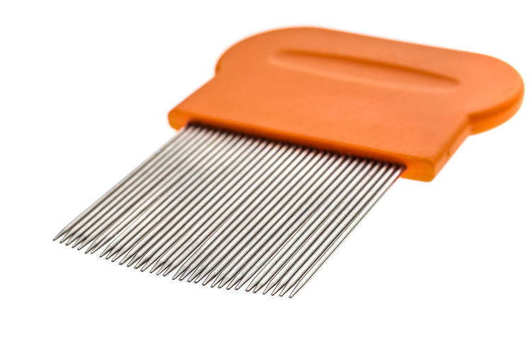 Lice comb for home removing lice treatment isolated on white. Metal tooth comb for lice and nits removing procedure. Isolated Lice Orange Lice Comb Metal Metal Comb Nits Removing Removing Lice Removing Nits Studio Shot Tooth Treatment White Background