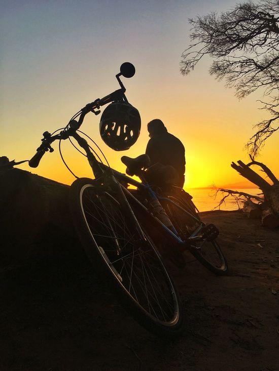 Mountain Biking Mountain Bike Walking Around Enjoying Life Quiet Moments Beach Life Beachphotography Silhouette Sunset Enjoying The View Santabarbara California Love Bike Week Bike Ride Bike The Week Of Eyeem EyeEm Best Shots Walking Here Belongs To Me Walking On The Beach Bicycle helmet Bicycle Helmet Bike Helmet Helmet Ride Safe Safe Ride