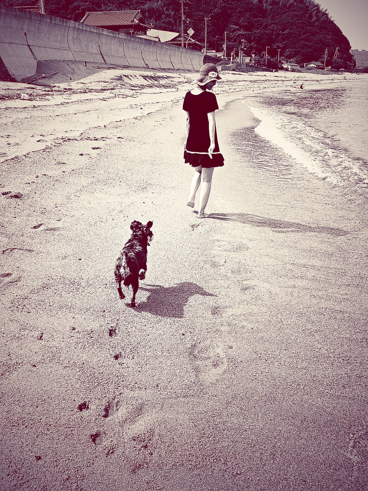 Awajishima Ocean Sea Dog Wife Family Blackandwhite Black And White Photography Blackandwhite Photography Black & White Black And White Nature People Together