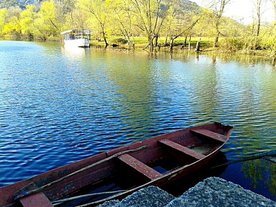 Montenegro Nature EyeEm Nature Lover