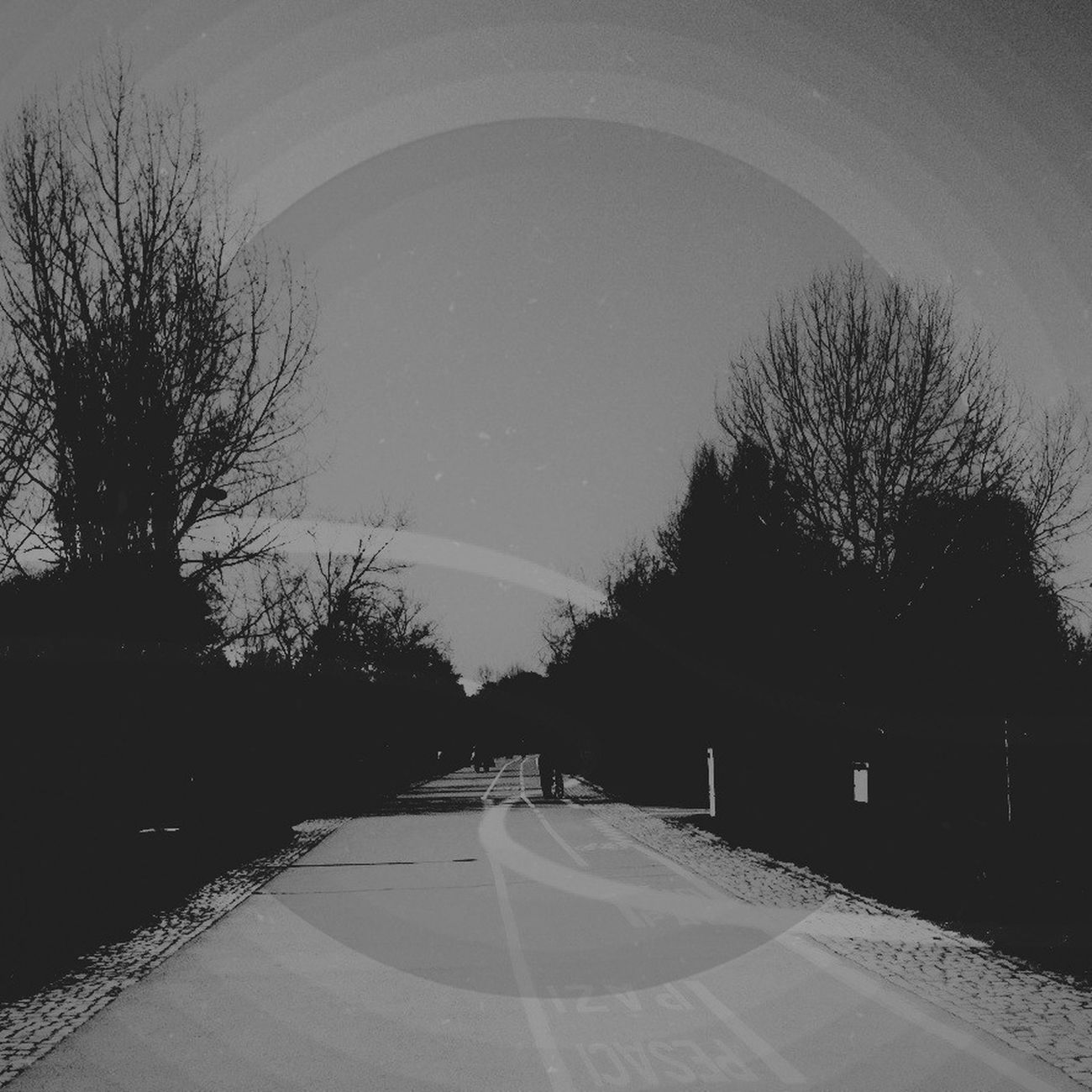 Blackandwhite Streetphoto_bw AMPt_community AMPt - Shoot Or Die