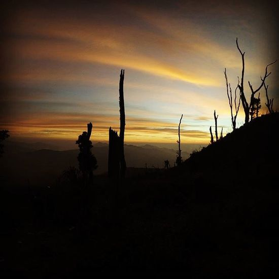 Sunset ala Talang!! Talang MyTripMyAdventure Instapendaki Id_pendaki Sunset Likeforlike Like4like Pendaki Sumbarrancak ExploreSumbar Pessel_pageants
