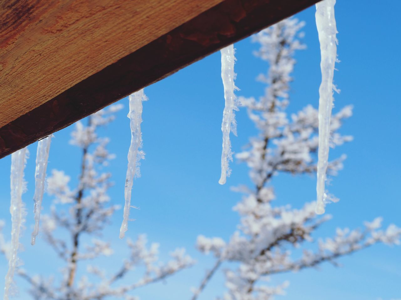 Close-up EyeEm Nature Lover EyeEm Best Shots Travel EyeEmNewHere Window Snow Winter Snowy Days... Snowflake❄️ Ice Icicles Icicles Hanging Icicle Beauty Icicles Up Close Neighborhood Map