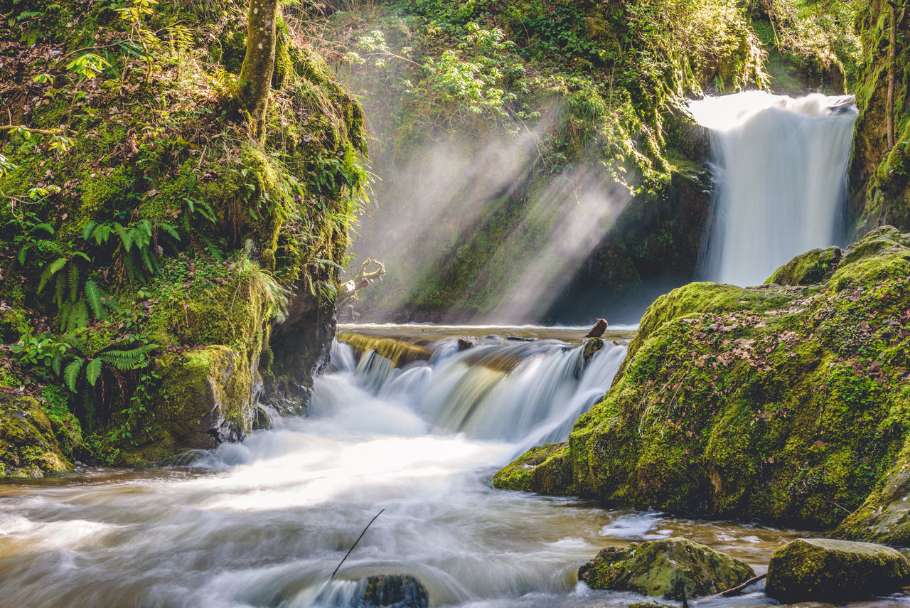 Beauty In Nature Blurred Motion Environment Flowing Flowing Water Forest Freshness Landscape Long Exposure Motion Nature No People River Scenics Stream - Flowing Water Travel Travel Destinations Vacations Water Waterfall