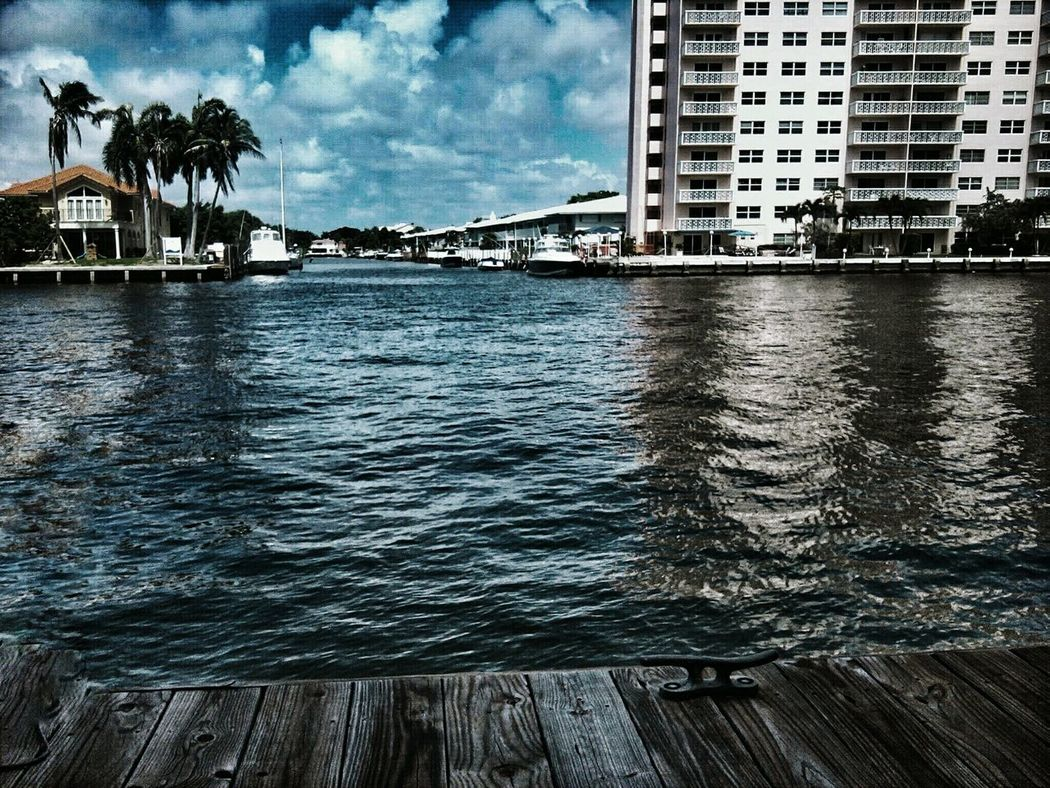 Fort Lauderdale Florida Intracoastal Fort Lauderdale FL Intracoastal Waterway Dock Buildings & Sky CBMetro313Pics Palm Trees Adapted To The City
