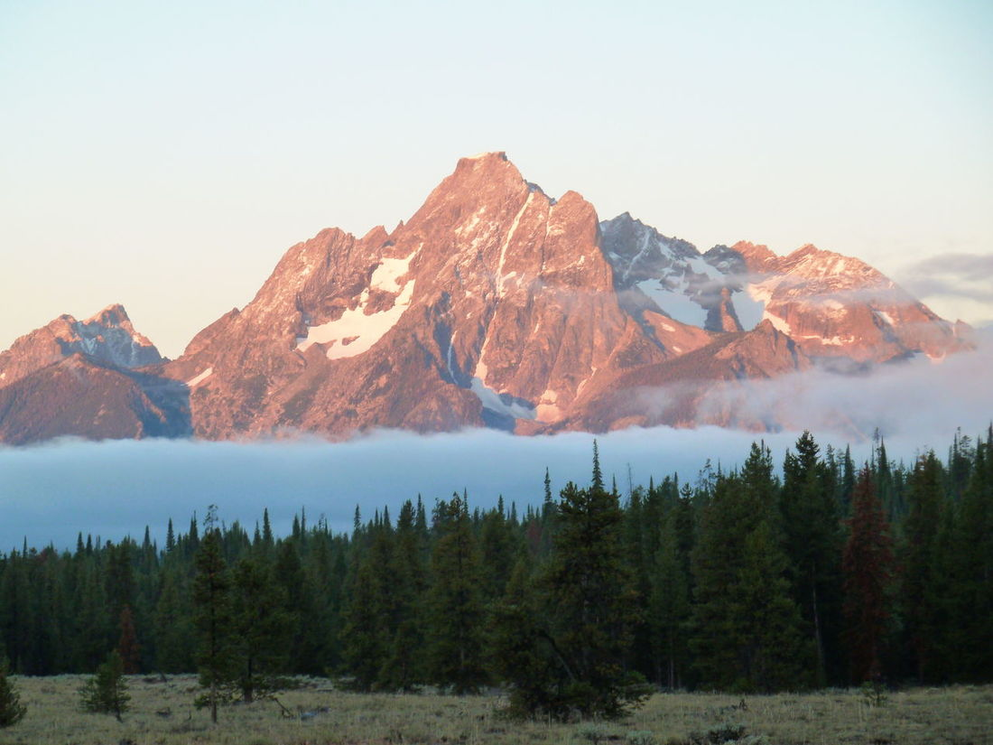 The Tetons in early morning light - Teton National Park, USA Tetons Beauty In Nature Cold Temperature Mountain Mountain Range Nature No People Outdoors Scenics Sky Snow Teton Mountains Teton National Park Tranquil Scene Tranquility Tree