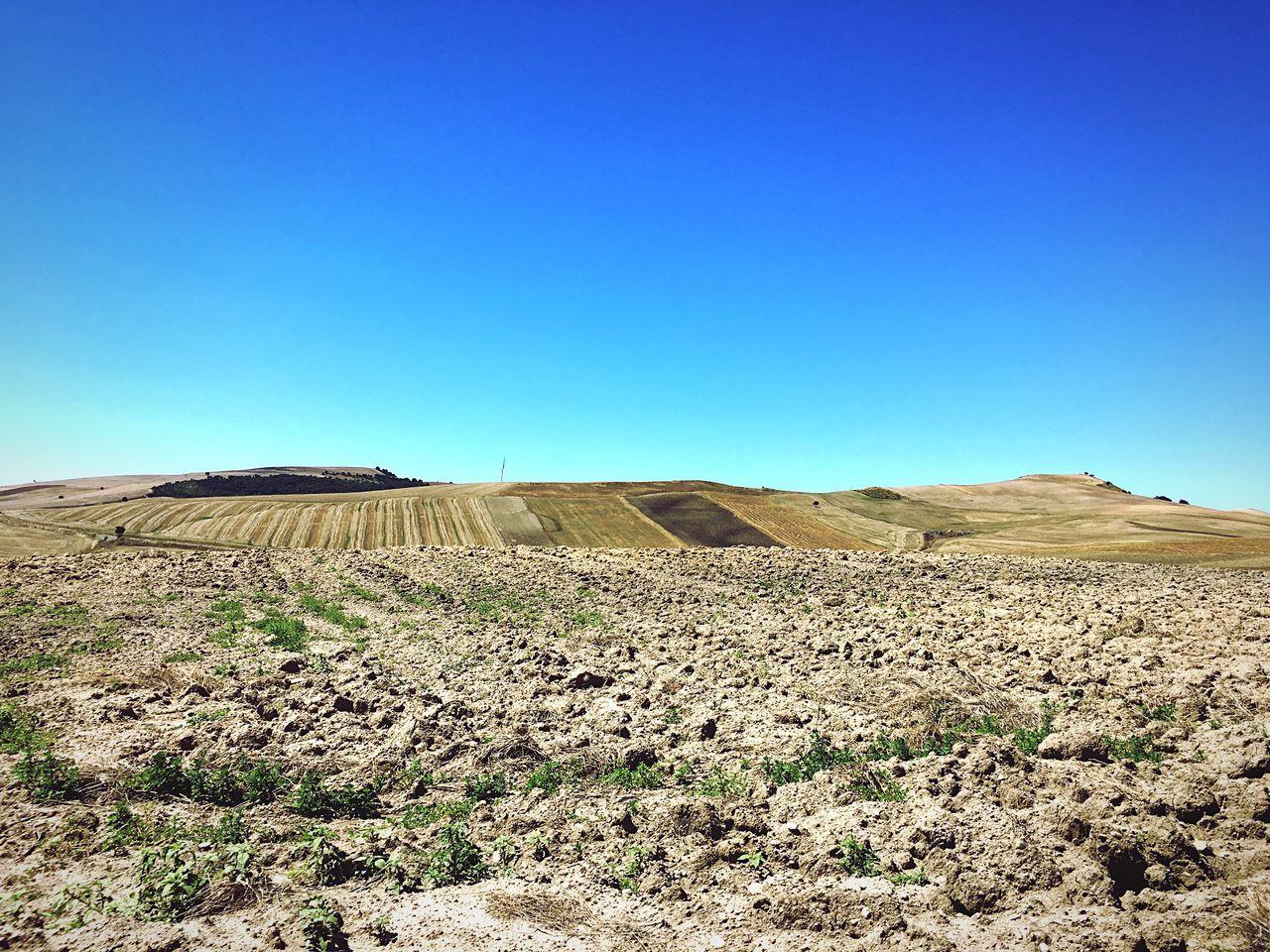 Italy Countryside Landscape Harvest Basilicata