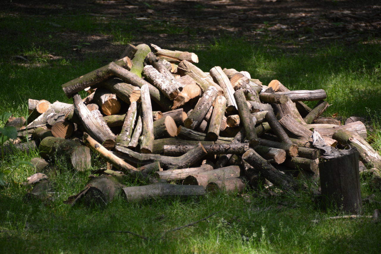 stack, timber, log, grass, wood - material, field, lumber industry, deforestation, heap, day, no people, outdoors, large group of objects, environmental issues, pile, woodpile, forestry industry, industry, nature, close-up