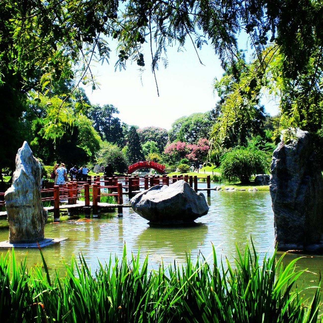 Japanese garden Japanesegarden Japanese  Jardin Streetphotoargentina Streetphoto Zen Balance Nice Garden