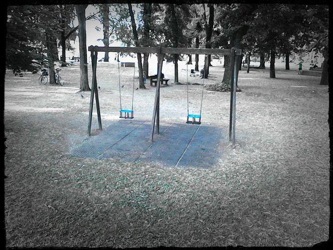 Lucca Altalena Monochrome Park