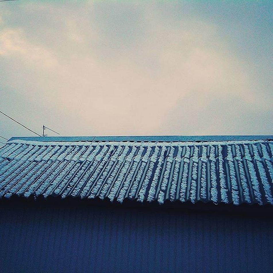 зима ,❄ а я в кроссах дибилпожизни нуда придурок зима снег зима2015 December