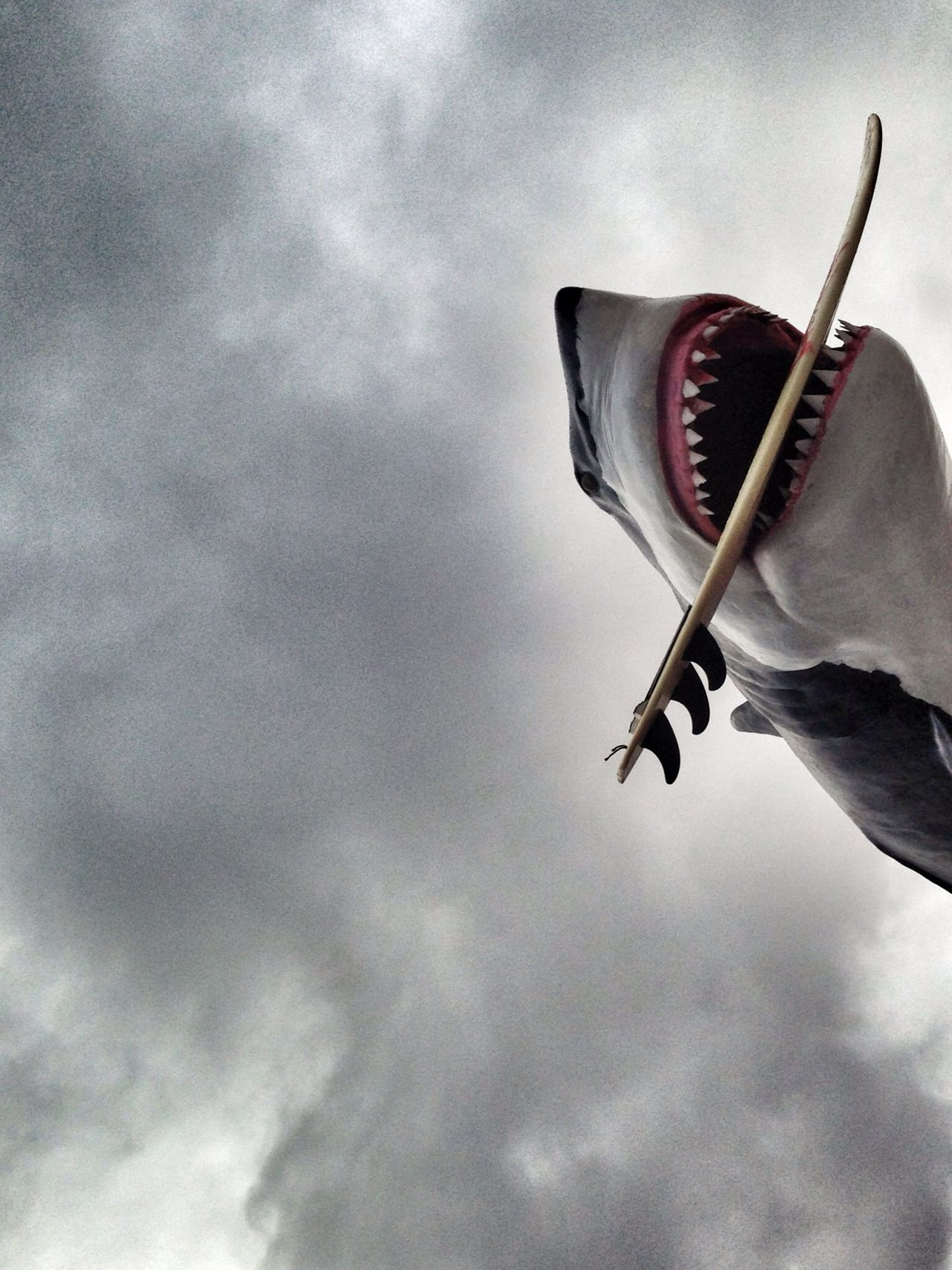 Beautiful stock photos of shark, Animal Representation, Art, Art And Craft, Cloud - Sky