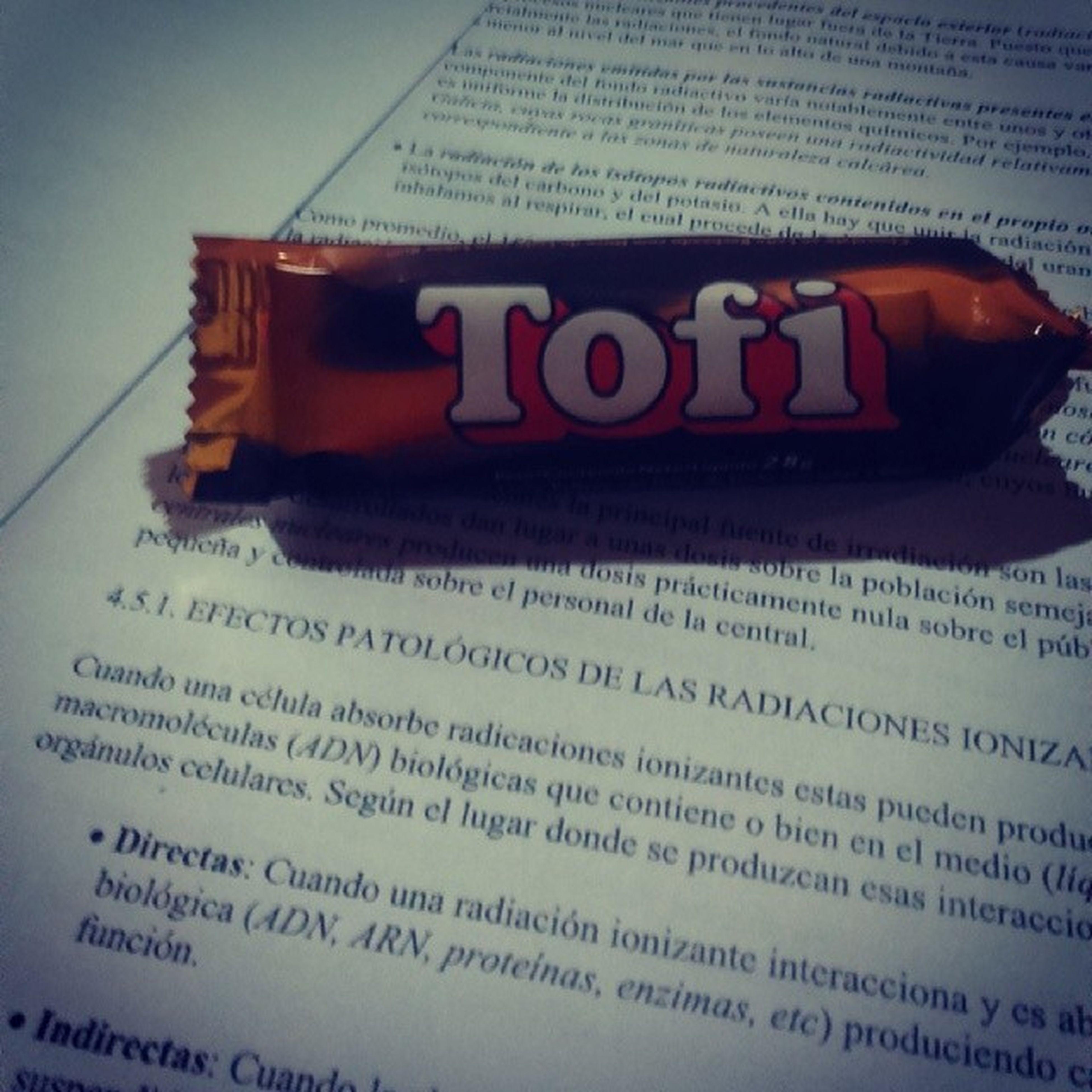 Estudiar tristemente engordando. Chocolate y CarlaBruni .