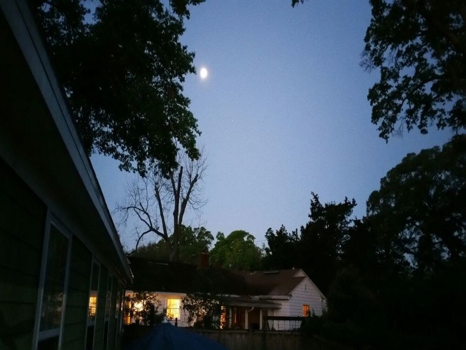 Jacksonville at night Architecture Built Structure House JacksonvilleFL Nature Night No People Outdoors Sky Streetphotography Tree