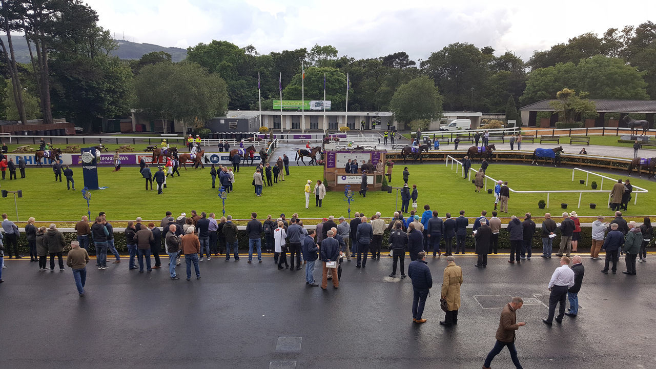 Horse Racing Horses Large Group Of People Leopardstown Racecourse Parade Ring Racecourse Real People