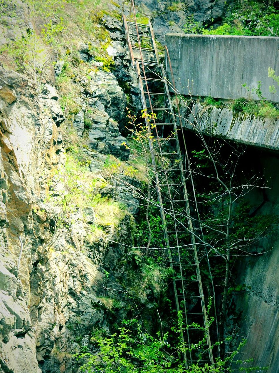 Folowme Climb No People Outdoors Ladder Ladder To Nowhere Forest Nature Old Faraway Nature On Your Doorstep Beauty In Nature Quiet Moments Alone From My Point Of View Fine Art Photography Nature Photography Mountain Todayphotography Forest Photography Wood Romania Calm Nature Rock