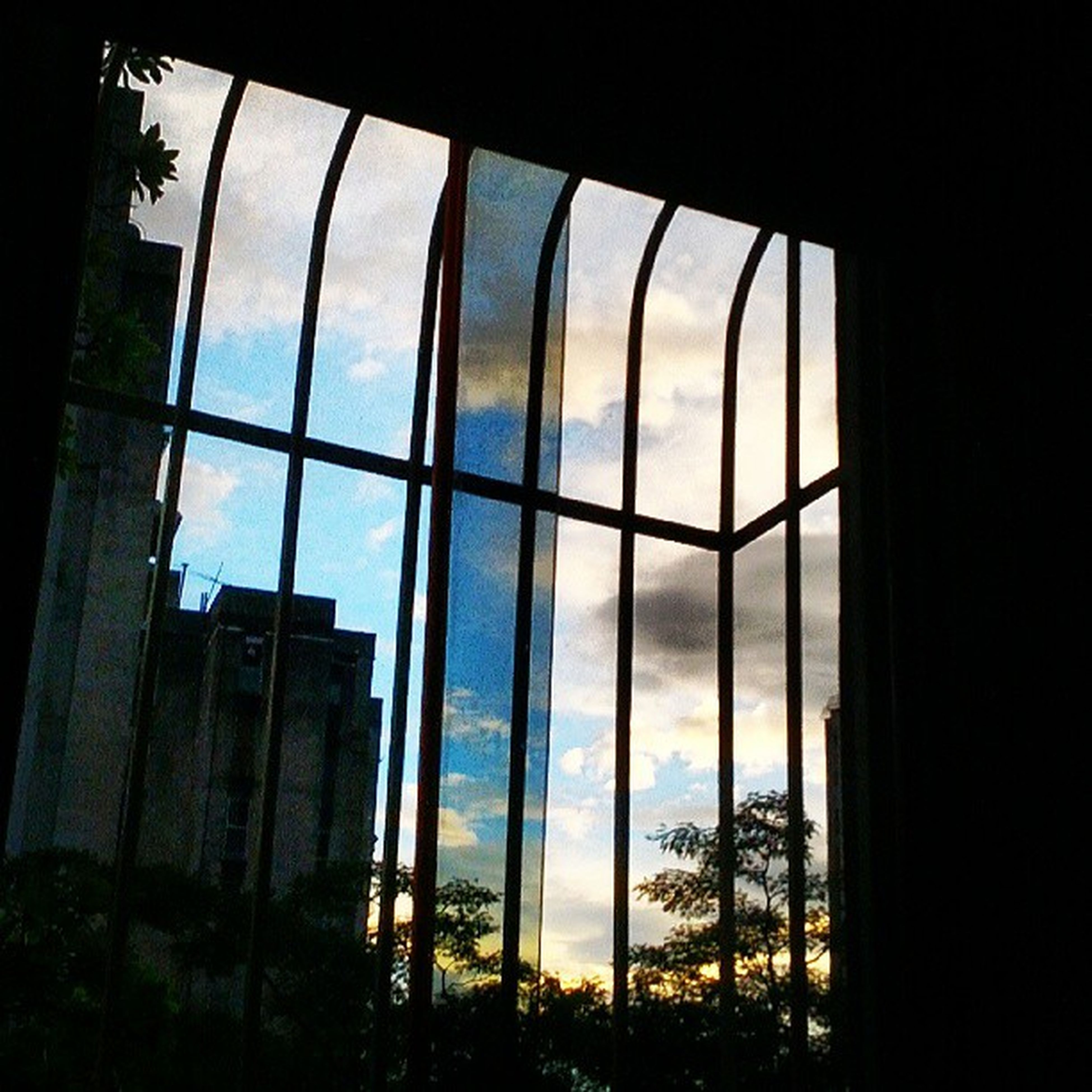 window, indoors, architecture, built structure, glass - material, sky, transparent, tree, day, looking through window, sunlight, silhouette, low angle view, no people, arch, cloud - sky, building exterior, reflection, nature, cloud