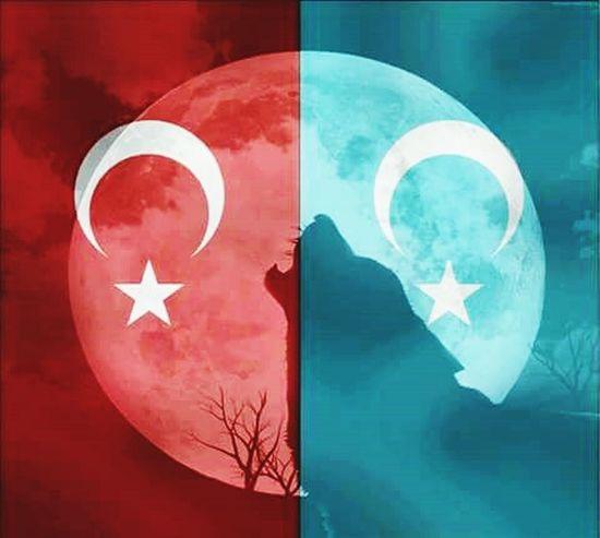 Turkey MHP Bozkurt Hello World Hi! Relaxing Turkmenistan Ccc Hayali kurdistan olanin mekani kabristan olur..