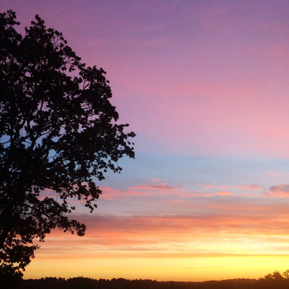 Sunrise Sunrise Colors Colorful Beauty In Nature Tranquility Sky Scenics Tree Peace And Quiet