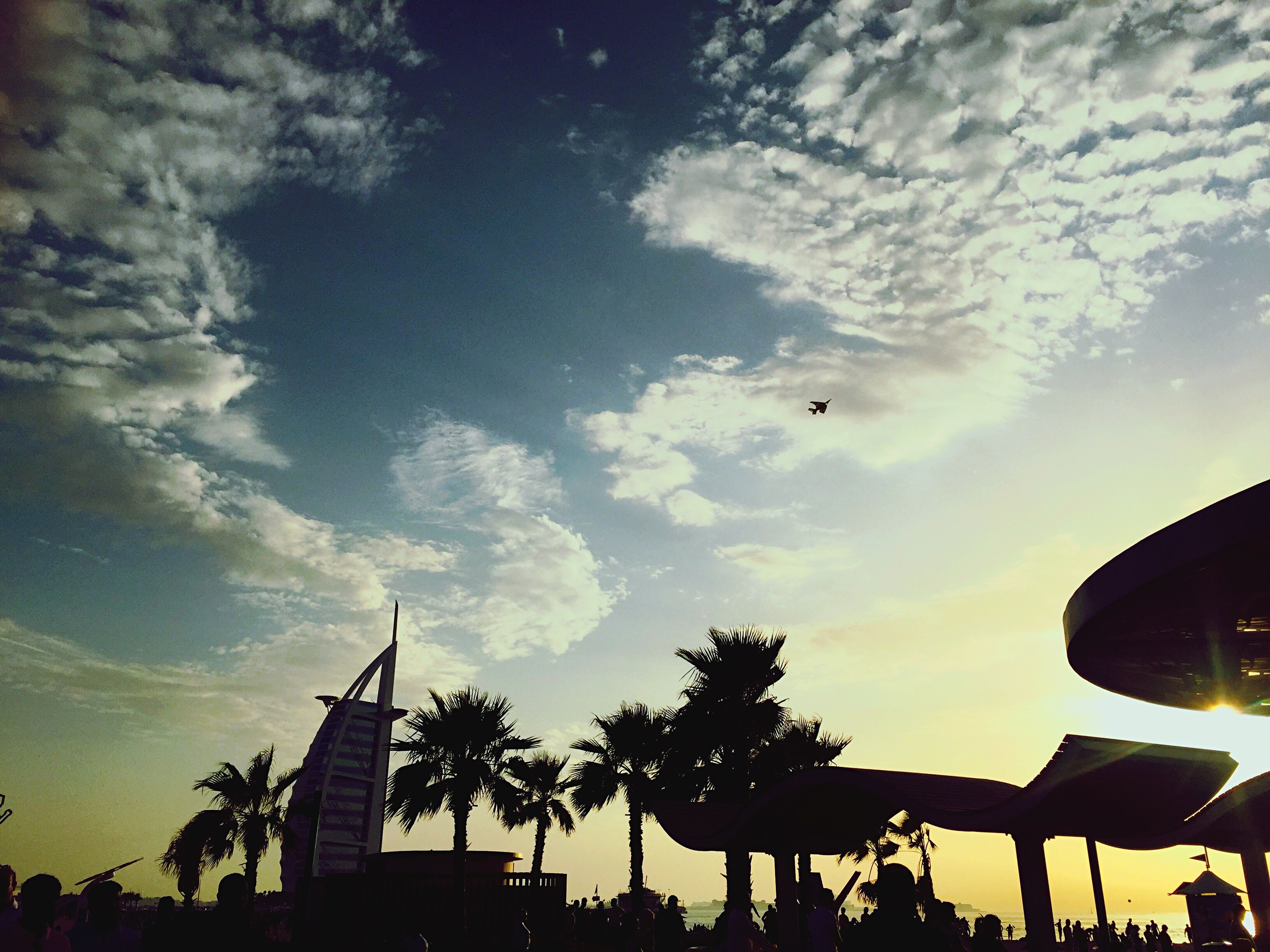 low angle view, sky, silhouette, built structure, architecture, cloud - sky, building exterior, sunset, cloud, flying, cloudy, dusk, outdoors, tree, palm tree, nature, building, sunlight, street light, no people