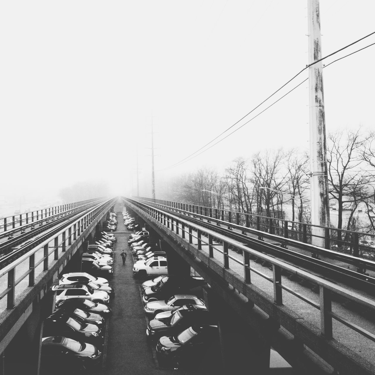 Foggy commute Connection Transportation Outdoors Clear Sky Sky Cable Day Bridge - Man Made Structure No People Electricity Pylon Nature Train Tracks Leading Lines Vanishing Point New York Commuters Commuter Commuting Foggy Fog Blackandwhite Blackandwhite Photography Welcome To Black