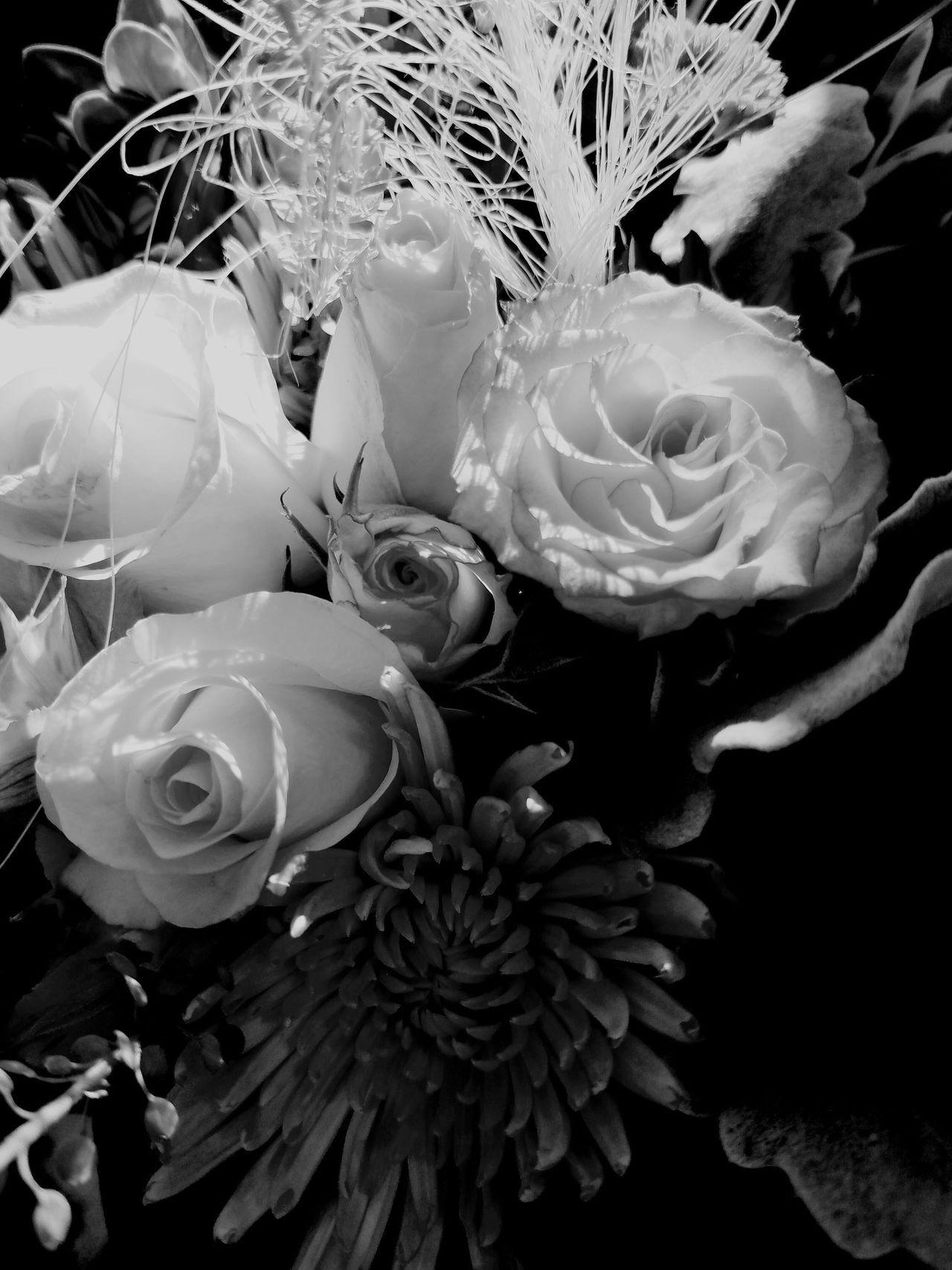 B&W Rose Bouquet B&w Botany Fine Art Fine Art Photography Flower Bouquet  Fragility MUR B&W The Song Of Light MUR On EyeEm