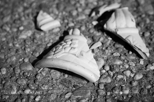 Pottery shards, probably from a broken monument, lie on the ground. Cemetery