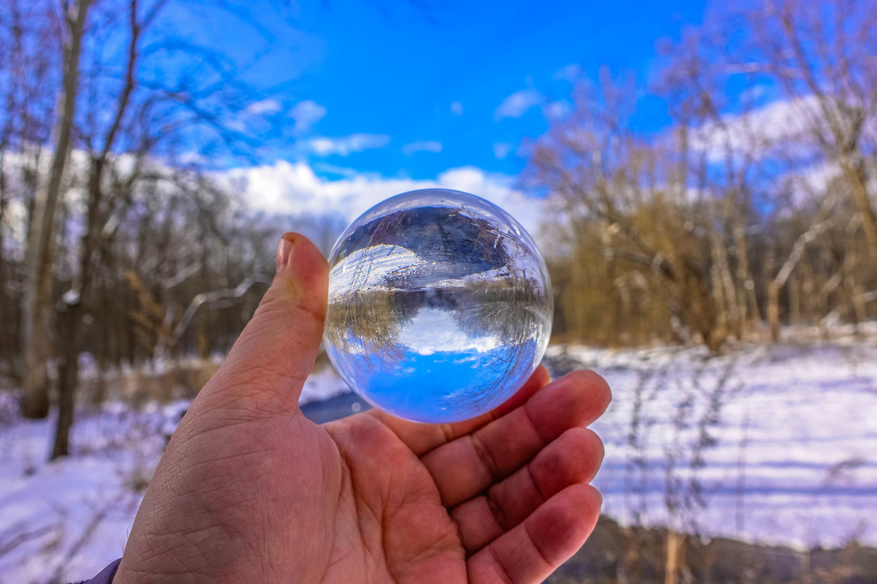 crystal ball, reflection, tree, human hand, holding, human finger, nature, bare tree, sky, human body part, focus on foreground, outdoors, crystal, beauty in nature, day, real people, landscape, close-up, one person, snow, winter, cold temperature, people