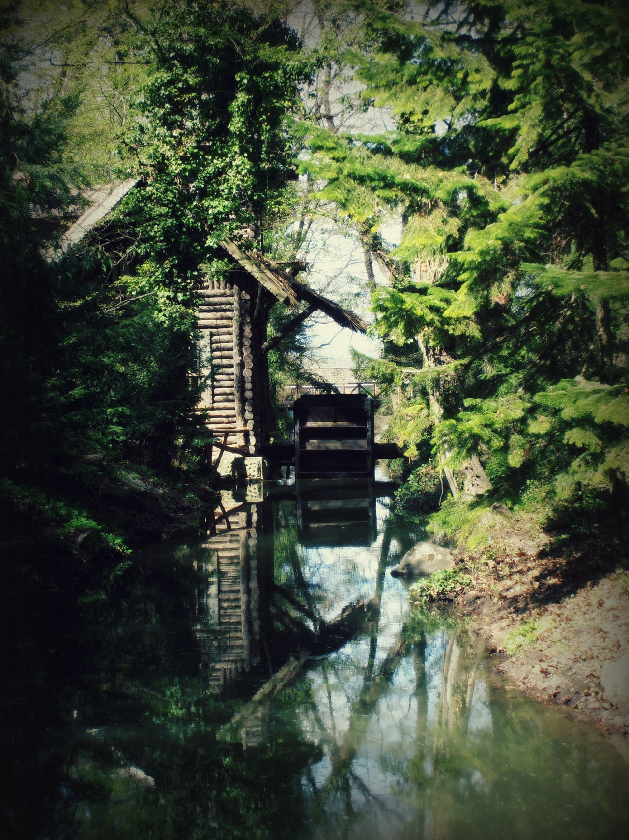 Vacratot Arboretum Nature Photography