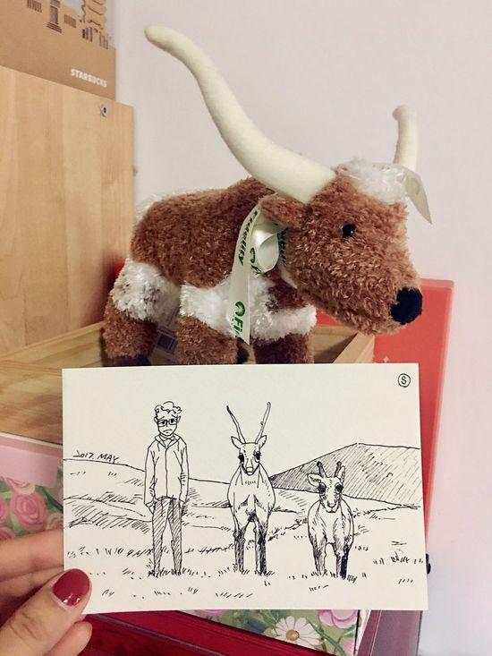 Sophiesart Sketch Deer