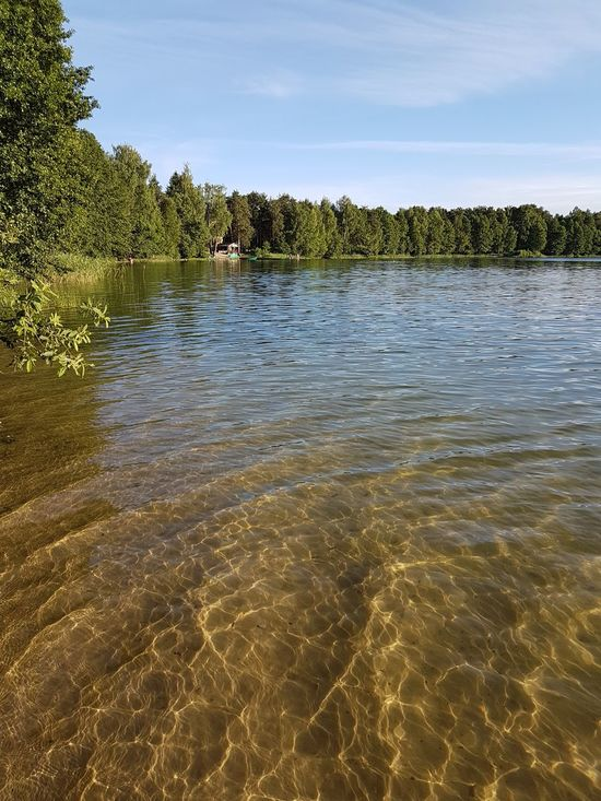 Clear Water Lake Nature Outdoors Reflection Summer Tree Water