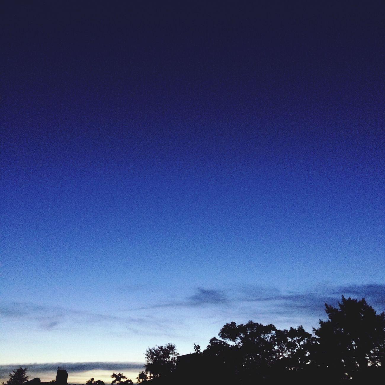Nature Evening Sky My Favorite Color Summer Sky