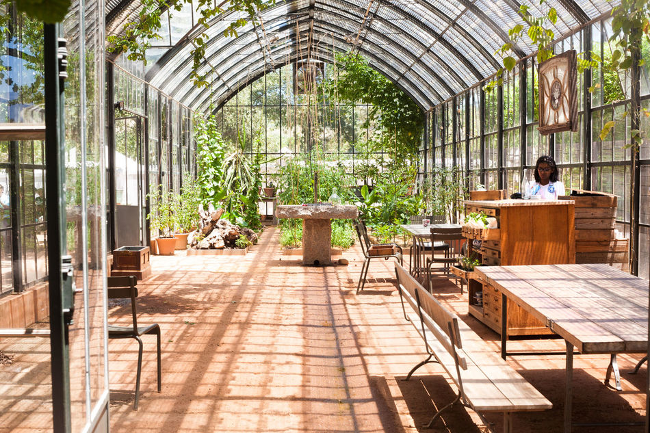 Glasshouse Architecture Beautiful Bench Chair Decor Van De Dag Empty Fauna Décor Beautiful Glass Plants Fauna Décor Beautiful Glasshouse Mountains Greenhouse Plants Growth House Indoors  Plant Plants And Flowers Potted Plant Sunlight Table Window