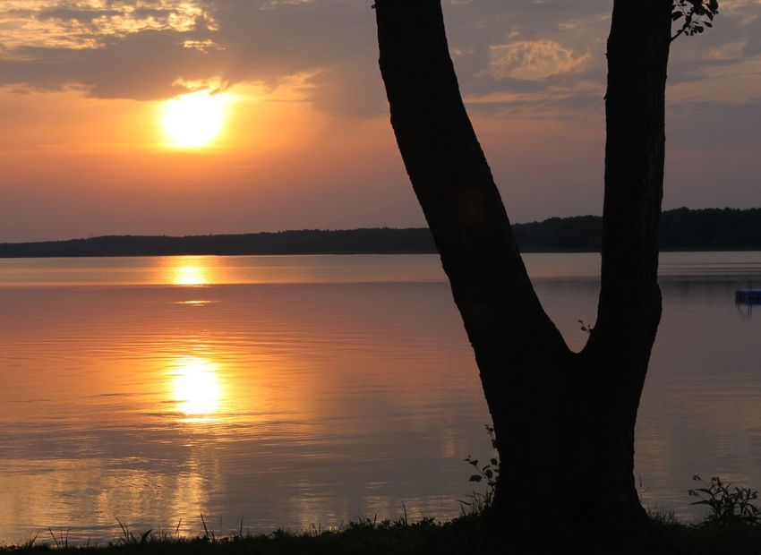 peaceful sunset by the lake Peace And Quiet Peaceful View Beauty In Nature Cloud - Sky Lake Nature No People Orange Color Outdoors Peaceful Evening Peaceful Place Reflection Scenics Silhouette Sky Sun Sunset Tranquil Scene Tranquility Tree Tree Trunk Water An Eye For Travel
