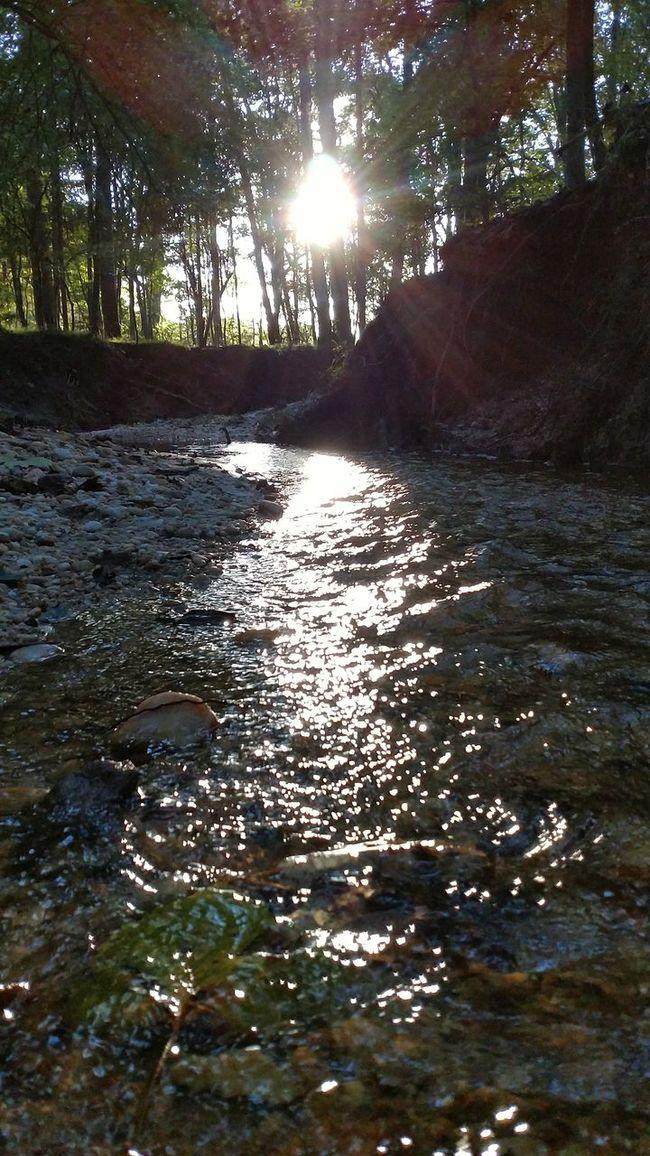 Forestwalk Sunburst Creek View Unfiltered