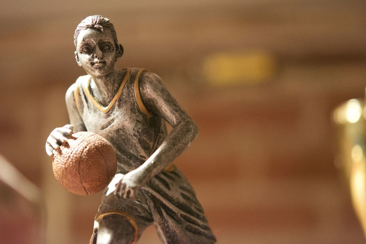Basketball Close-up Day Indoors  No People Sport Statue Trophy Deer
