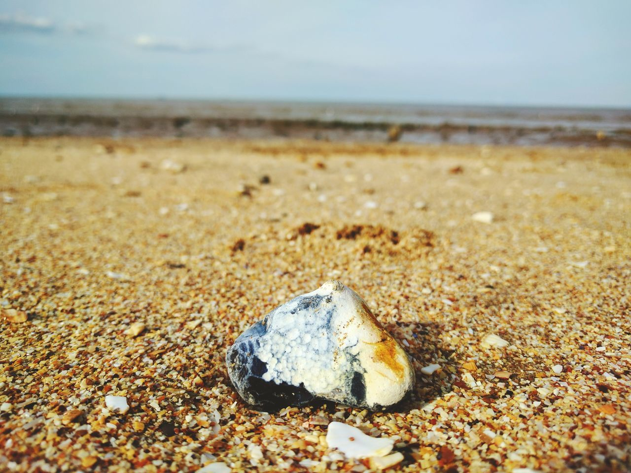 Focus Beach Sand Day Sea No People Nature Outdoors Close-up Sky Stone Rock Flint British Beaches The Great Outdoors - 2017 EyeEm Awards