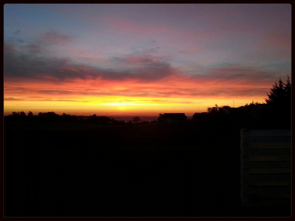 sunrise in autum Enjoying The Sun