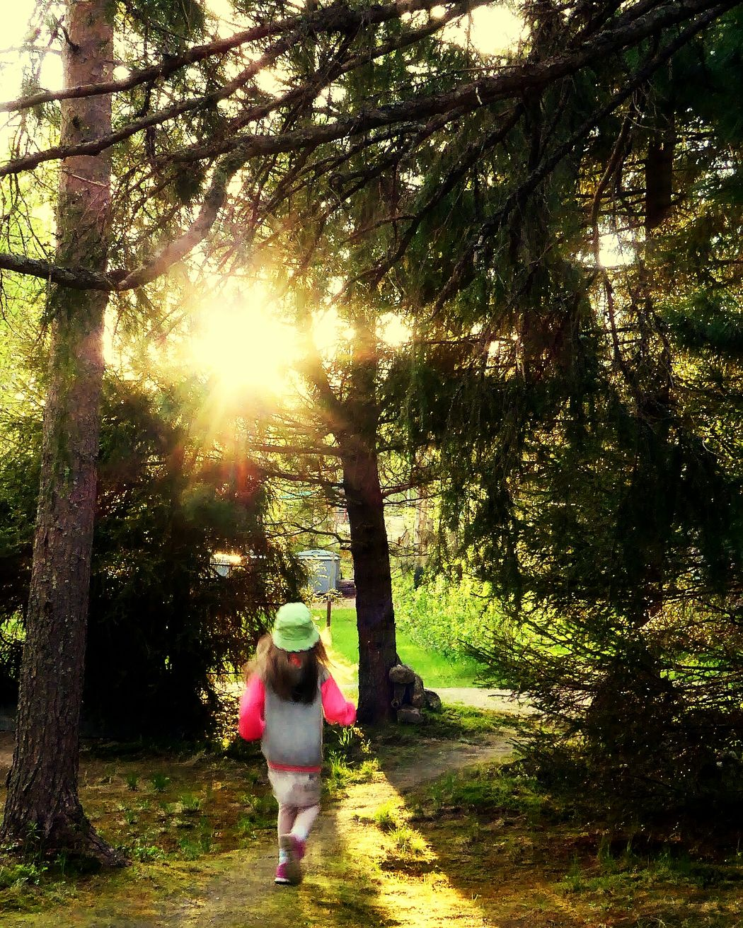 Childhood Precious Moments Of Life Ilovemygrandchildren 💜 Sunlight Tree Outdoors Nature Arcticsummer Lapland, Finland Iloveolddoors 💜life Is Good 💙 Amazing Day Nature Lapland, Finland Arctic Light Beauty In Nature Naturelovers Summer Vibes